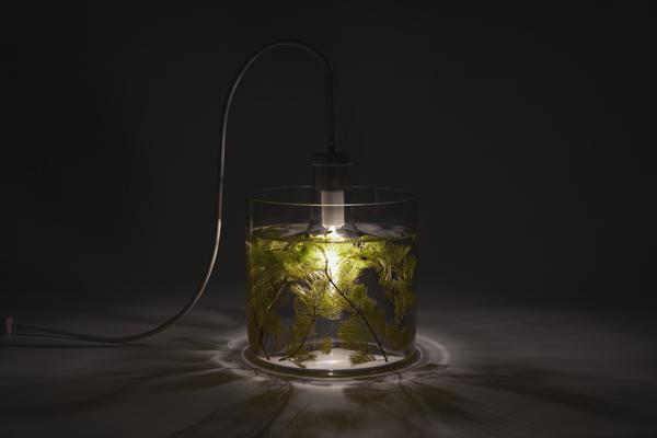 Green lighting design concept vase leuchte by designer miriam