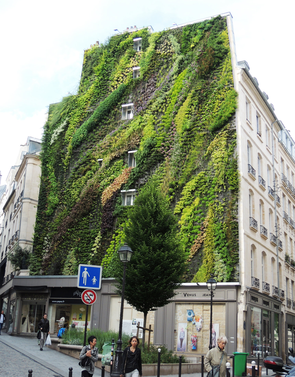 vertical-garden-by-patrick-blanc-at-paris-design-week-05