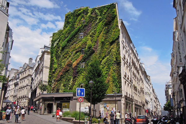 vertical-garden-by-patrick-blanc-at-paris-design-week