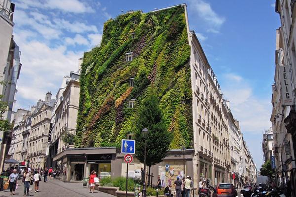 vertical-garden-by-patrick-blanc-at-paris-design-week