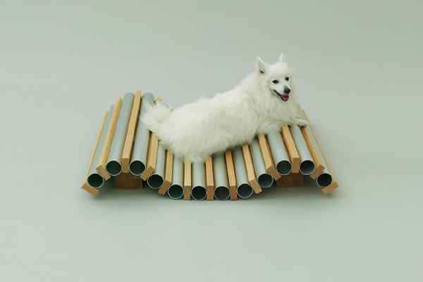 architecture-for-dogs-02