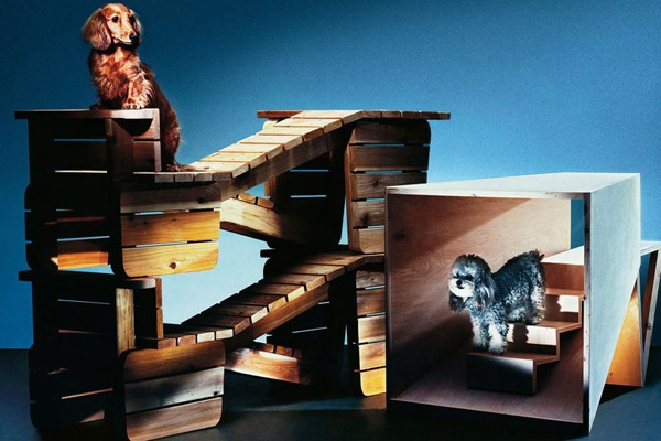 architecture-for-dogs-03