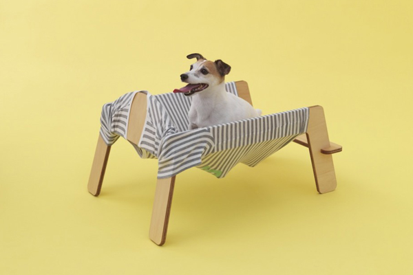 architecture-for-dogs-10