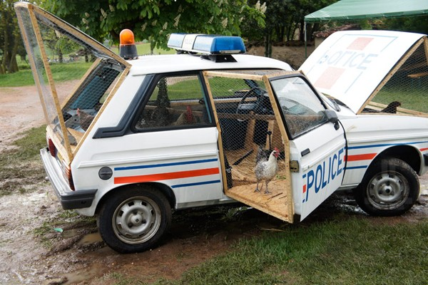 benedetto-bufalino-transforms-a-1970-police-car-into-a-chicken-coop-01