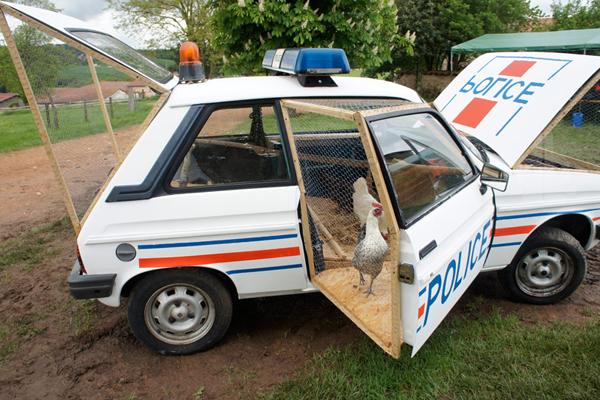 benedetto-bufalino-transforms-a-1970-police-car-into-a-chicken-coop-03