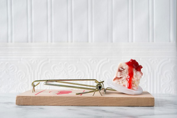 gourmet-mouse-trap-food-photography-series-davide-luciano-and-claudia-ficca-01