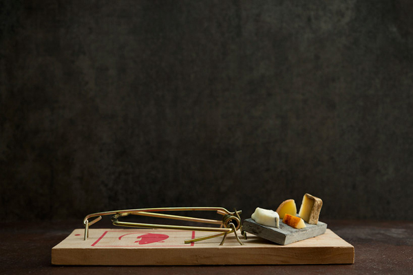 gourmet-mouse-trap-food-photography-series-davide-luciano-and-claudia-ficca-04