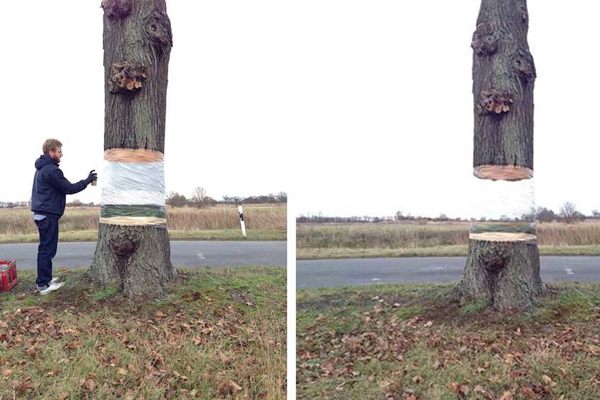 Elegant Artists Create An Illusion Of A Hovering Tree Photo Gallery