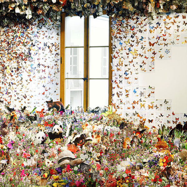 Flora-and-Fauna-Paper-installation-01