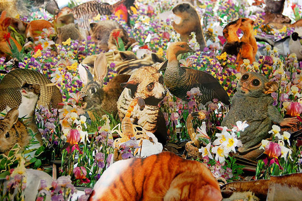 Flora-and-Fauna-Paper-installation-06