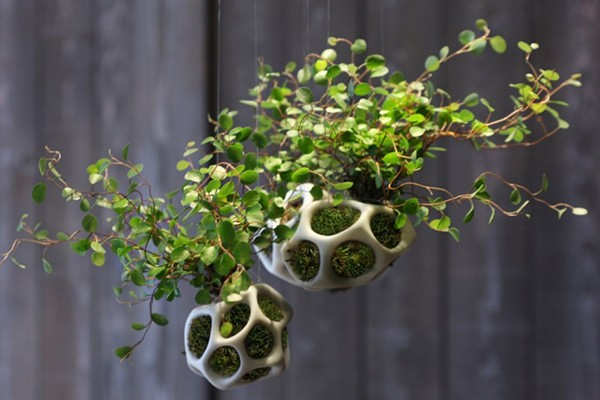 cella-house-plant-holder-01