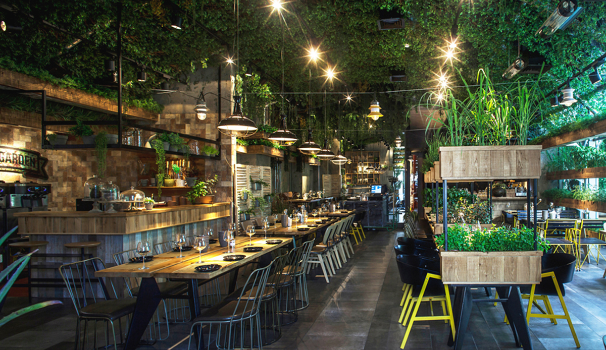 Restaurant in Israel uses in-house grown herbs for their ...